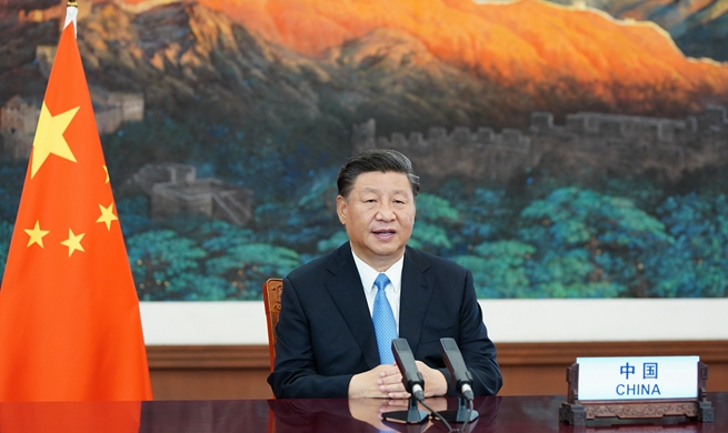 Xi charts course for world to meet challenges amid COVID-19
